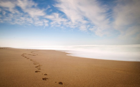 6788821-fantastic-footprints-wallpaper